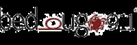 bedbug911-logo